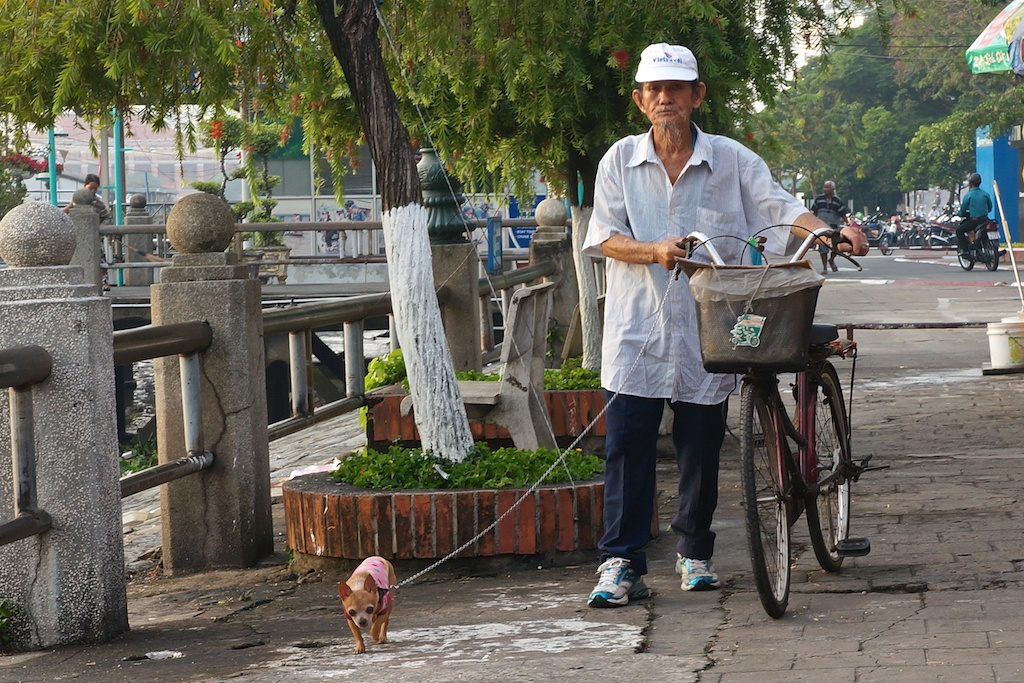 Small dogs are very much the thing in HCMC