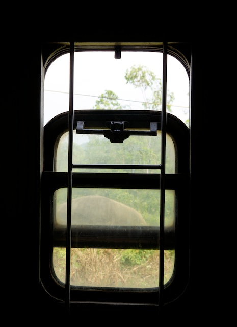 window vietnamese train