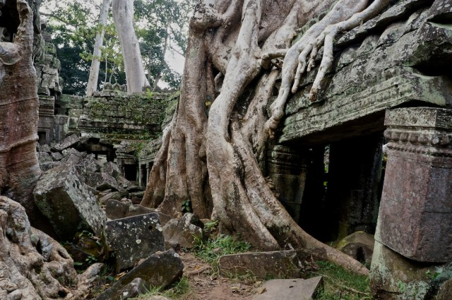 Ta Phrom 'The Jungle Temple'