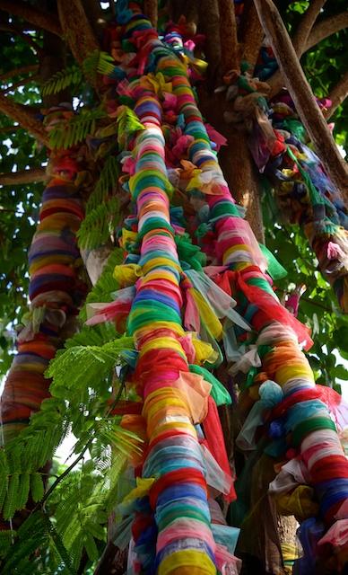 tree props mai kham sari in Chiang Mai