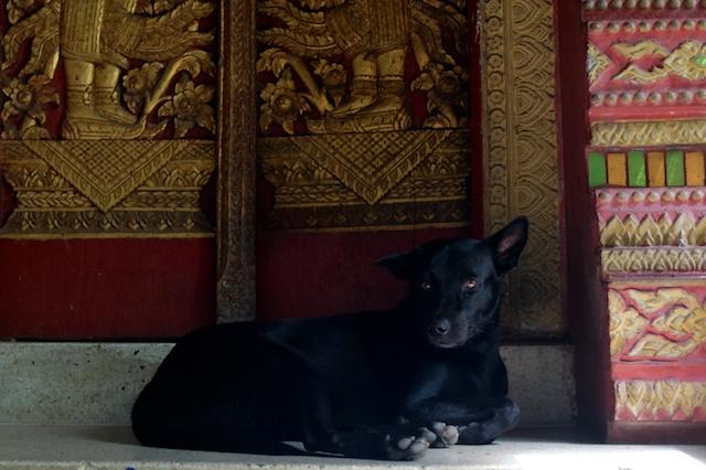Wat Puak Tame