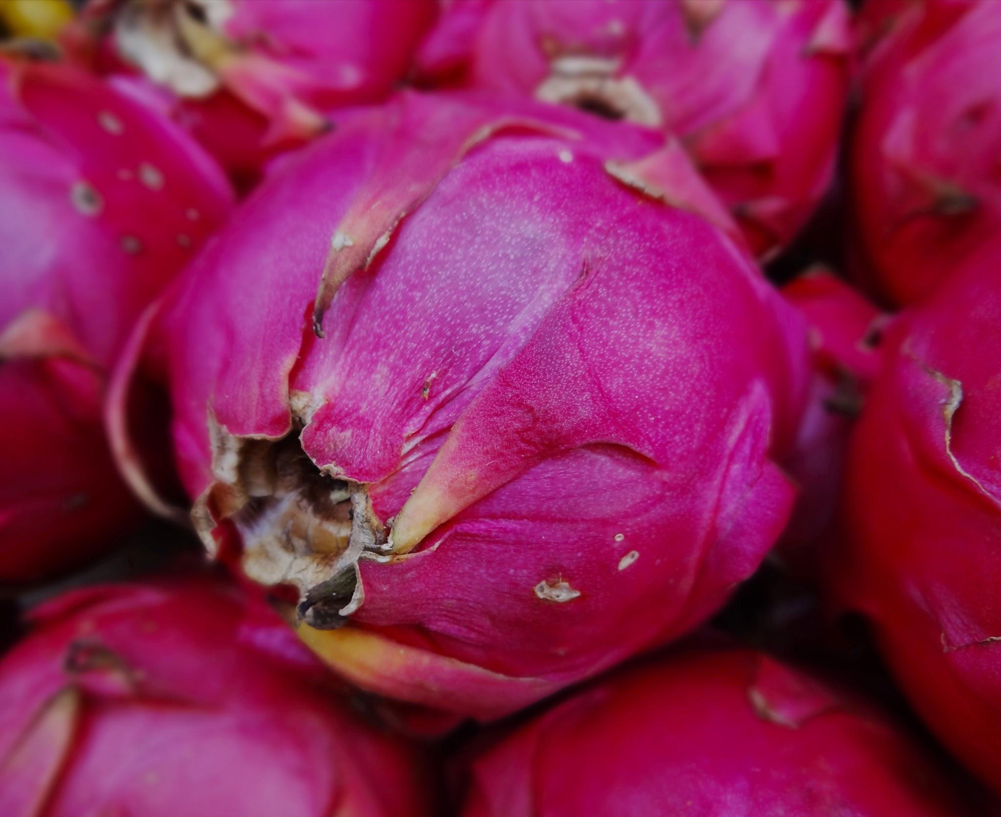 pink dragon fruit in Kuala Lumpur