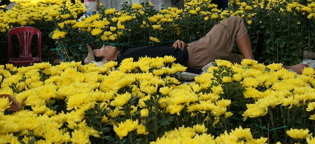 man asleep with Tet flowers