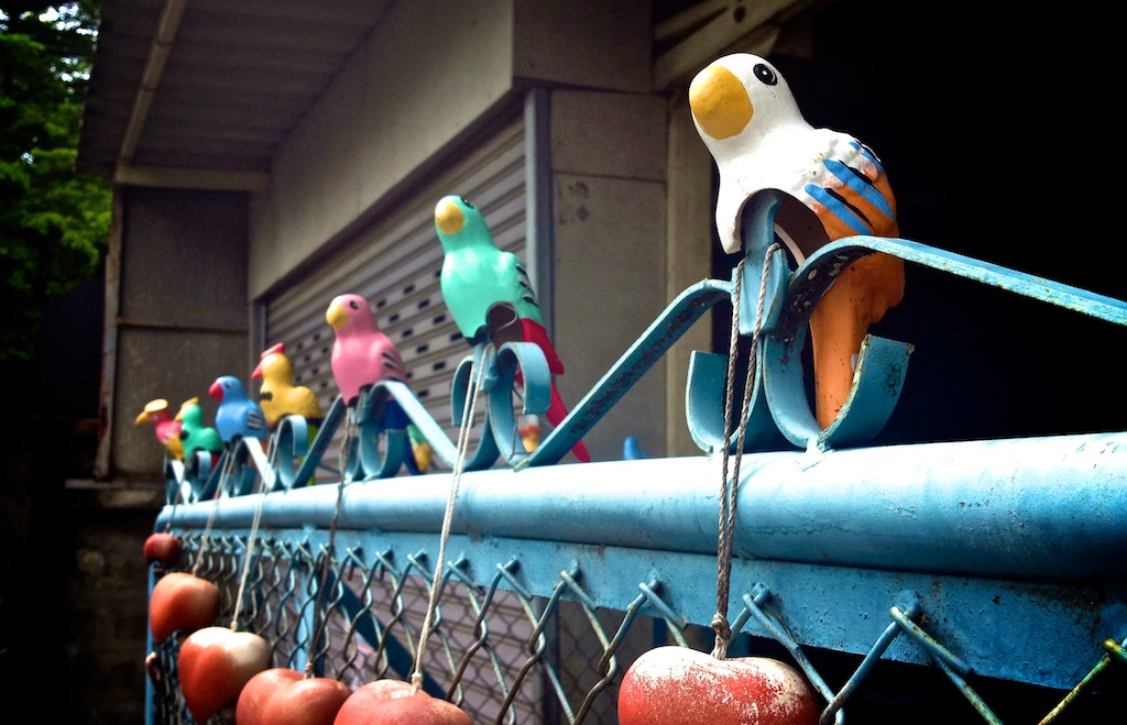 model birds decorating the top of a gate on a soi in Chiang Mai